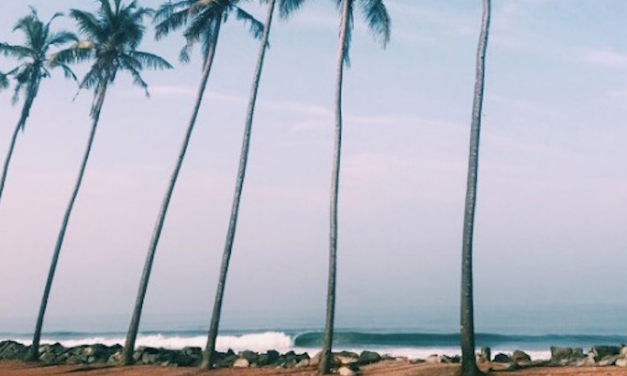 Surf and Inspiration in India