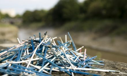 Stop Plastic Pollution: Switch the Stick