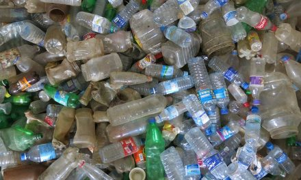 Reflect, Refill and Reuse