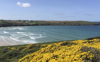 Stay In Cornwall's Top 10 Surf Escapes