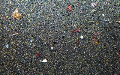 Microbeads ban comes into force