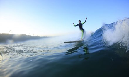 Surviving and Thriving: A Surfer's Tale