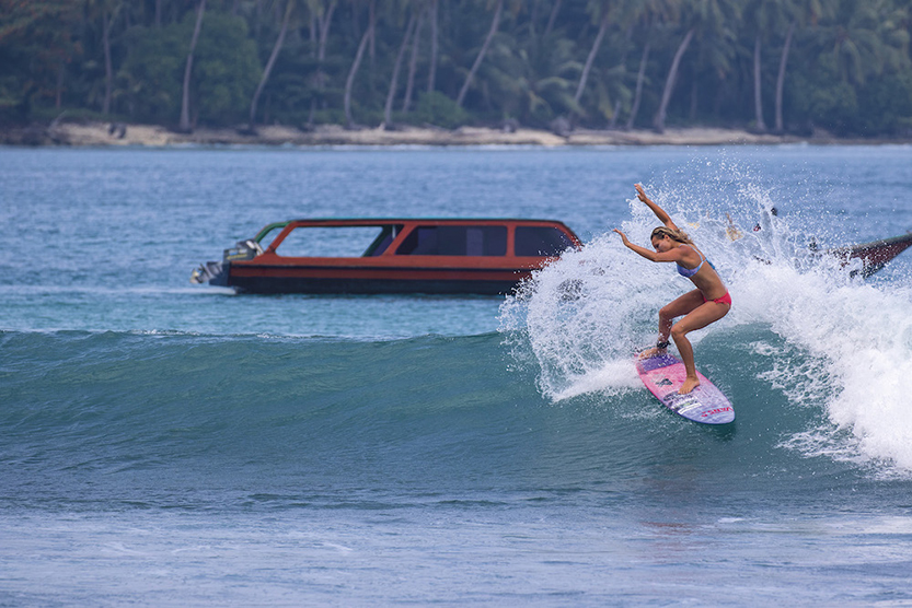 Tassy Swallow in the Mentawais
