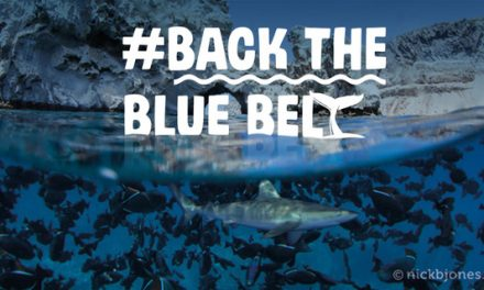 Marine Environment #BackTheBlueBelt