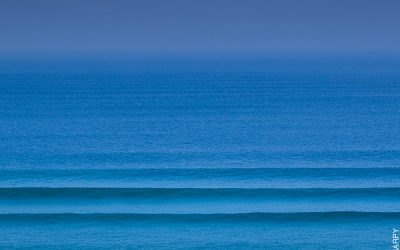 Before you surf, do your research