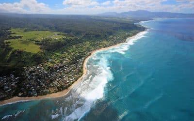 Surfing Tips: Beach Breaks vs Reefs