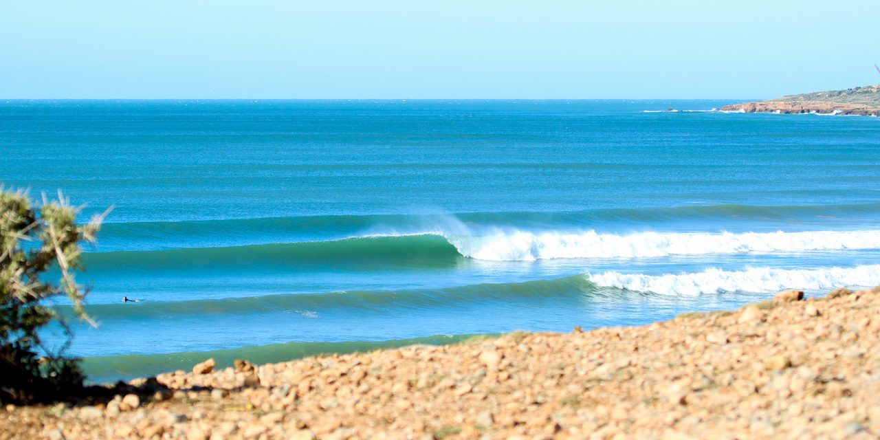 Surf Camps, the Pandemic and Plans for 2021