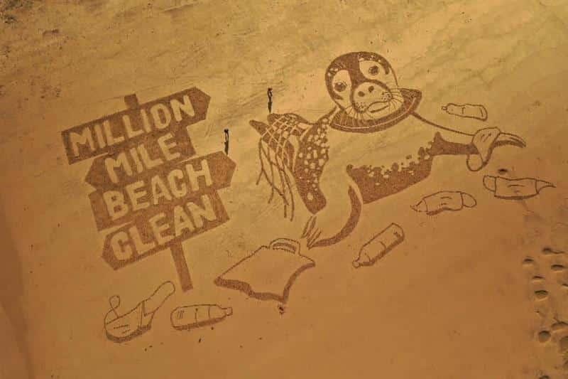 SAS's Million Mile Beach Clean